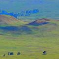 Hills Of Waimea by Pamela Walton