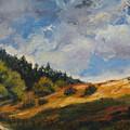 Hills by Rick Nederlof