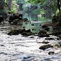 Hillsborough River II by Robert Meanor