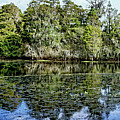 Hillsborough River Panorama 1 by John Trommer