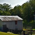 Hillside Farm  by Lisa Kleiner