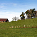 Hillside Farming by Skip Willits