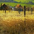Hillside In Fall Jalaksova, Slovakia by Kurt Meredith