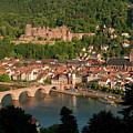 Hilltop View - Heidelberg Castle by Greg Dale