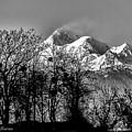 Himalaya ...the Trishul Peak by Pankaj Sharma