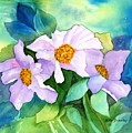 Himalayan Poppies by Lorie Bramley