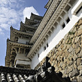 Himeji Castle Tower by Andy Smy