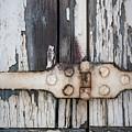 Hinge On Old Shutters by Elena Elisseeva