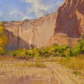 Hint Of Autumn Canyon De Chelly by Spike Ress