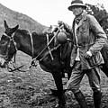 Hiram Bingham (1875-1956) by Granger