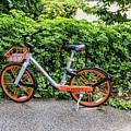 Hire Bike by David Rolt