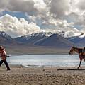 His Horse, Tibet, 2007  by Hitendra SINKAR