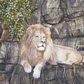 His Majesty by Shirley Braithwaite Hunt