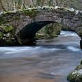 Hisley Bridge Lustleigh Cleave by Helen Northcott