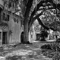 Historic Bok Gardens Home by Susan Molnar