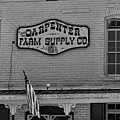 Historic Carpenter Farm Supply Sign by Selena Wagner