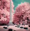 Historic Cemetery In Infrared by Natasha Rawls