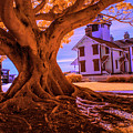 Historic Fermin Point Lighthouse In Infrared by Randall Nyhof