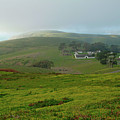 Historic Pierce Point Ranch In Point Reyes by Charlene Mitchell