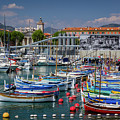 Historic Port Of Nice, France by Liesl Walsh