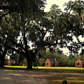 Historic Slave Houses At Boone Hall Plantation In Sc by Susanne Van Hulst