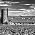 Historic Townsend Barn Lewes in Black and White