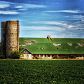 Historic Townsend Barn On Kings Highway In Lewes by Bill Swartwout Fine Art Photography