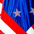 Historical American Flag by Susan Vineyard