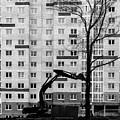 Hitachi Digger Destroys A Tree by John Williams