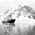 Hms Endurance Antarctic Ice Patrol Ship by Wilf Doyle