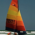 Hobie Cat In Surf by Sally Weigand