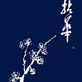 Holding A Flower -  A Branch Of Almond Blossom by Nadja Van Ghelue