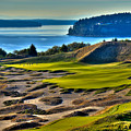 Hole #14 - Cape Fear - At Chambers Bay by David Patterson