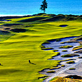 Hole #5 At Chambers Bay Golf Course by David Patterson