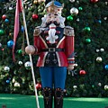 Holiday Nutcracker by Dale Powell