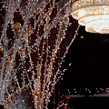 Holiday Wonderland Of Lights 2 by Frances Hattier