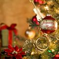 Holiday's 2 by Aurwin Nicholas