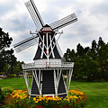 Holland Grey Windmill  by Amy Lucid