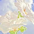 Hollyhocks And Sky by Barbara Dean