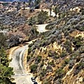 Hollywood Sign / Hollywood Hills by Robert Butler