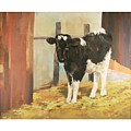 Holstein Calf by Robert Tutsky