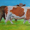 Holstein Friesian Cow And Brown Cow by Mike Jory