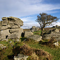 Holwell Tor On Dartmoor by Pete Hemington