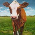 Holy Cow by Katharine Turk-Truman