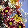 Holy Week Flowers 2017 4 by Sarah Loft