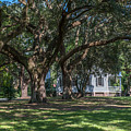 Mcleod Home Through The Oaks by Dale Powell
