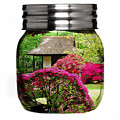 Home Flower Garden In A Glass Jar Art by Marvin Blaine