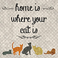 Home Is Where Your Cat Is-jp3040 by Jean Plout