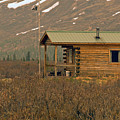 Home Sweet Fishing Home In Alaska by Denise McAllister