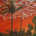 Homestead Sunset by Alina Martinez-beatriz